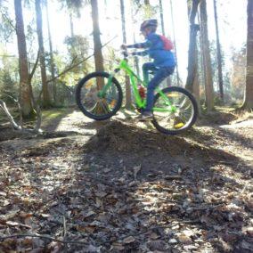 Mountainbike klein